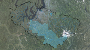 Nisqually Watershed w Rivers