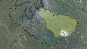 Puyallup Watershed w Rivers