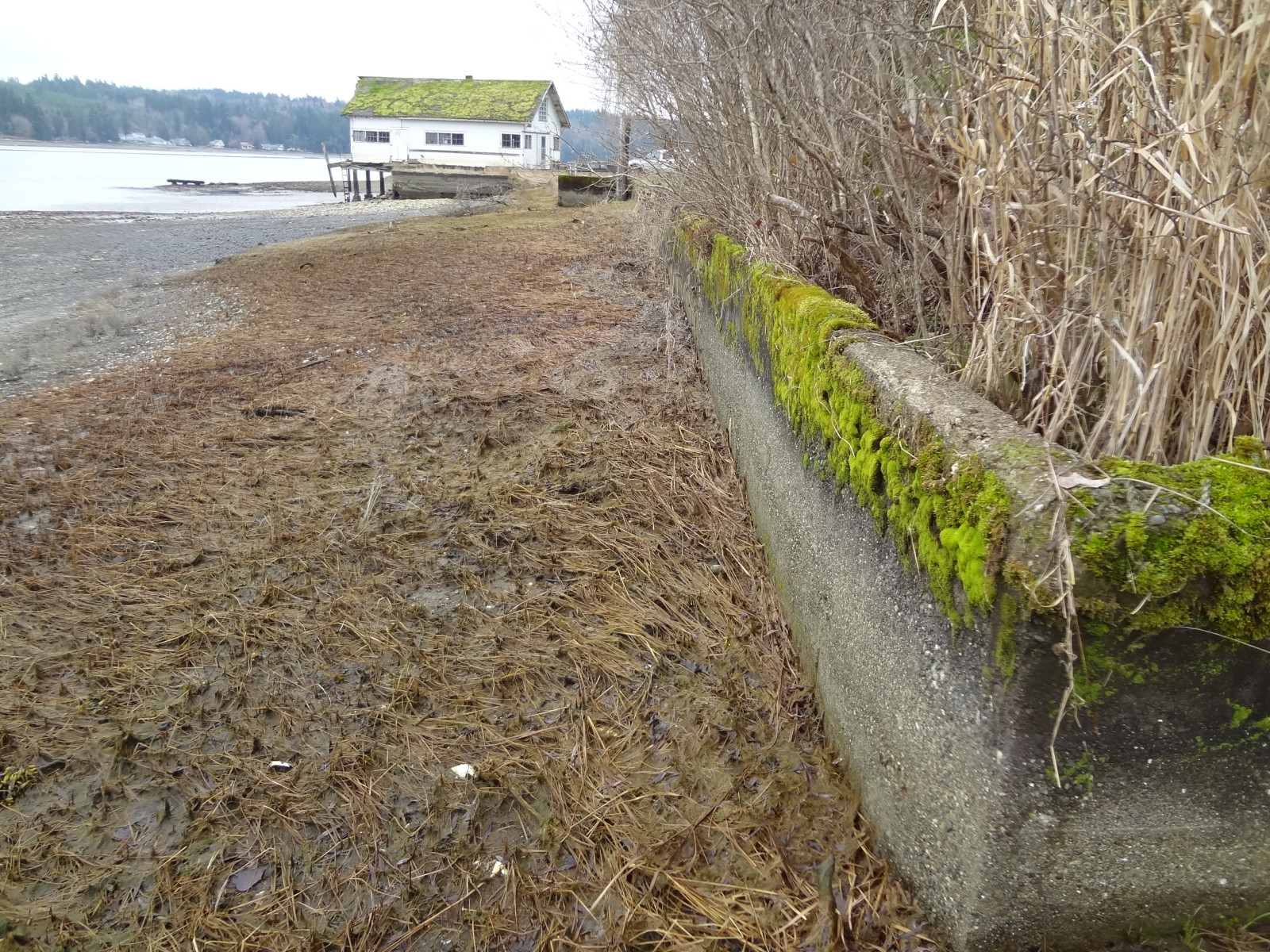 WRIA 14 Kennedy & Goldsborough Projects – South Puget Sound