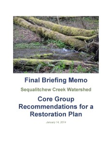 Sequalitchew Creek Final Briefing Memo 01_14_13_Page_01