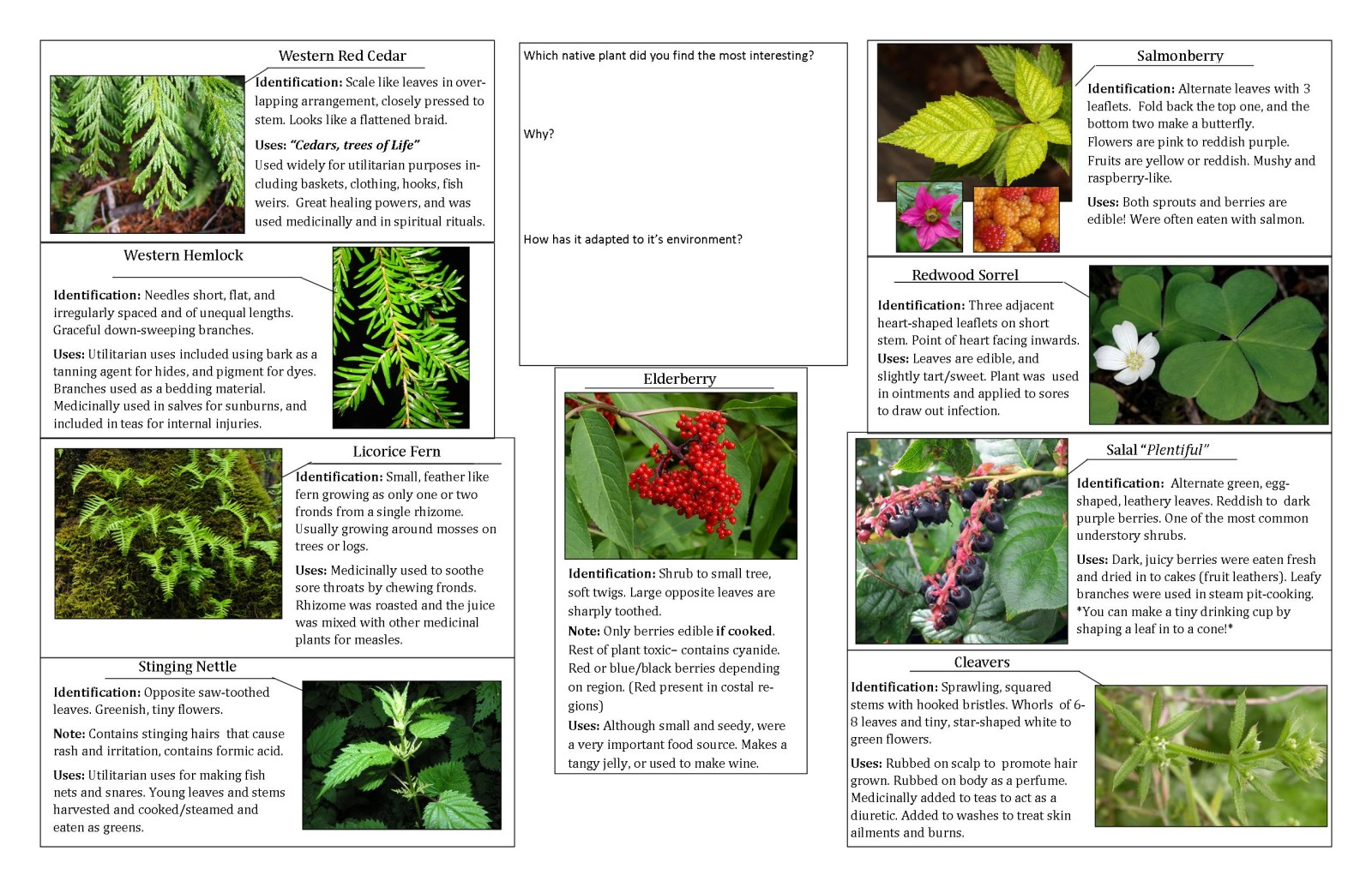 Botany course guide