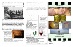 Ethnobotany Field Guide Tolmie State Park