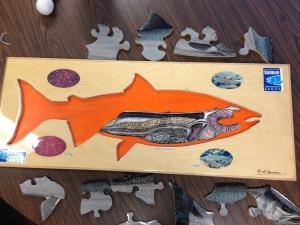 Salmon Puzzle 1
